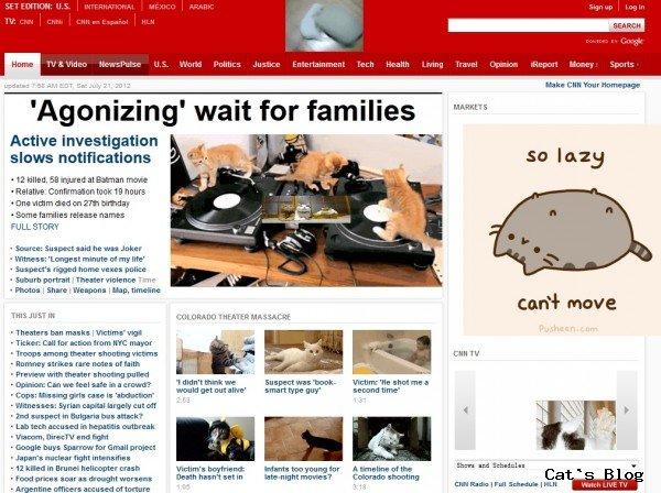 有猫才更精彩?那把网站喵化怎么样?